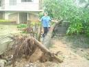 Tifón en las Filipinas